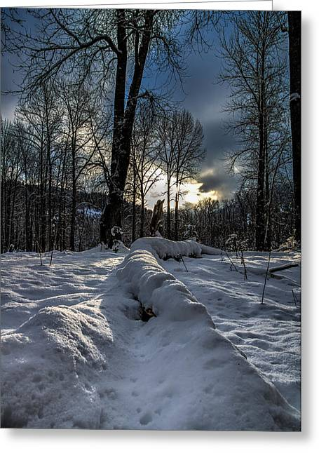 Kingston Greeting Cards - A Winter Valley Greeting Card by Derek Haller