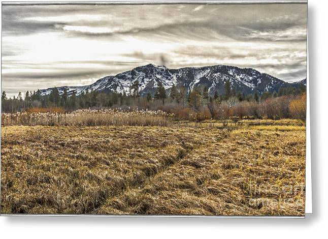 Willow Lake Greeting Cards - A Winter Without Snow Greeting Card by Mitch Shindelbower