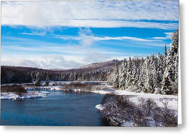 Evergreen Covered In Snow Greeting Cards - A Winter Wonderland on the Moose River Greeting Card by David Patterson