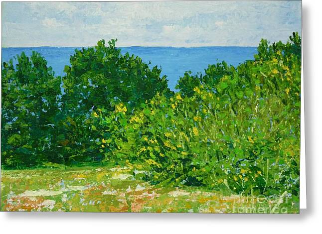 St Petersburg Florida Paintings Greeting Cards - A Winters Day at the Beach Greeting Card by Gail Kent
