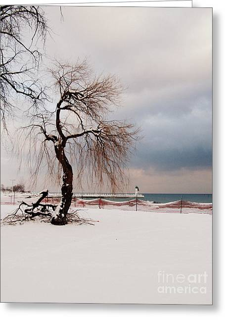 A Winter's Day On Lake Ontario Canada Greeting Card by Avis  Noelle