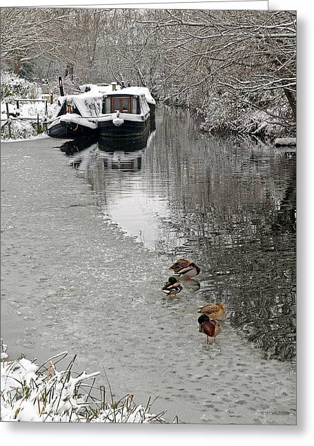 White River Scene Greeting Cards - A Winters Day on the River Greeting Card by Gill Billington