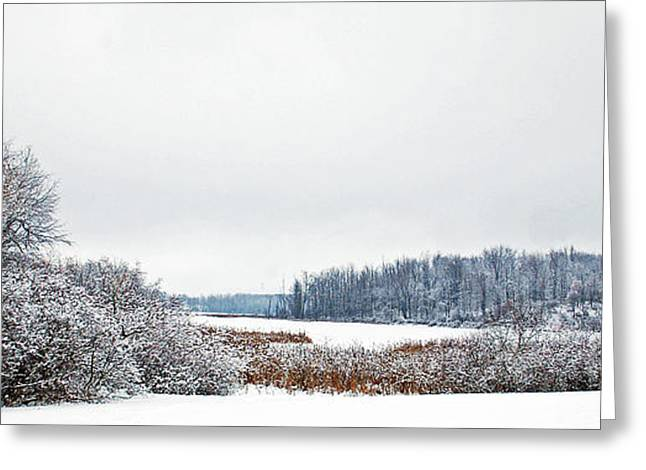 Wintry Greeting Cards - A Winters dream Greeting Card by Aimee L Maher Photography and Art