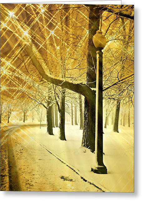 Marty Koch Greeting Cards - A Winters Night Greeting Card by Marty Koch
