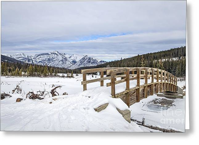 Banff Greeting Cards - A Winters Tale Greeting Card by Evelina Kremsdorf