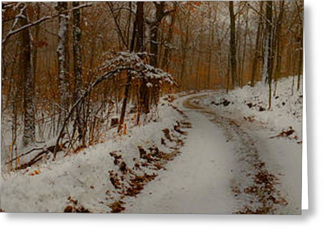Wintry Greeting Cards - A Wintry Road Not Taken Greeting Card by William Fields