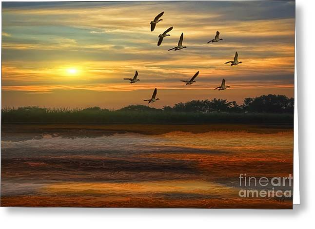 Outdoor Life Art Prints Greeting Cards - A Wonderful Day Greeting Card by Tom York Images