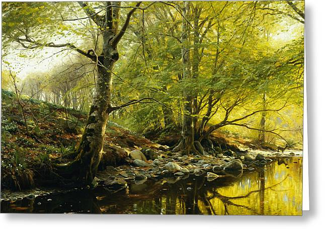 Calm Paintings Greeting Cards - A Wooded River Landscape Greeting Card by Peder Monsted