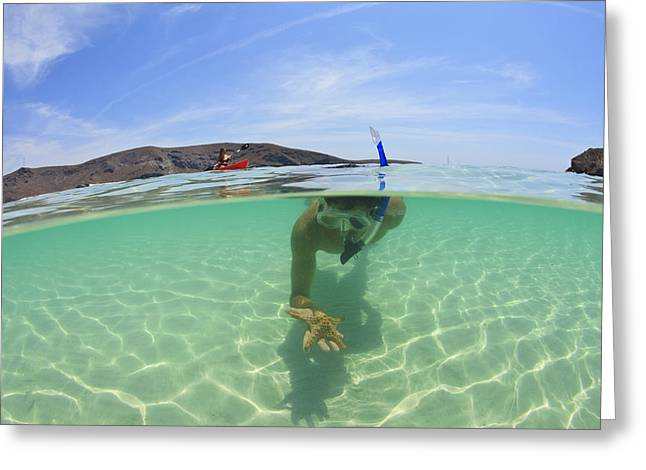 Mid Adult Women Greeting Cards - A Young Man Snorkeling Underwater Greeting Card by Stuart Westmorland