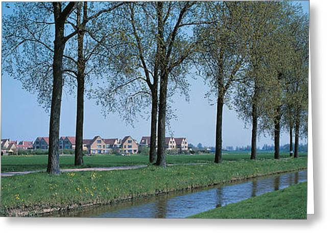 Tree Lines Greeting Cards - Aalsmeer Holland Netherlands Greeting Card by Panoramic Images