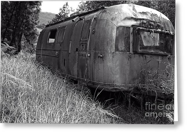Junk Greeting Cards - Abandoned Airstream in the Jungle Greeting Card by Edward Fielding