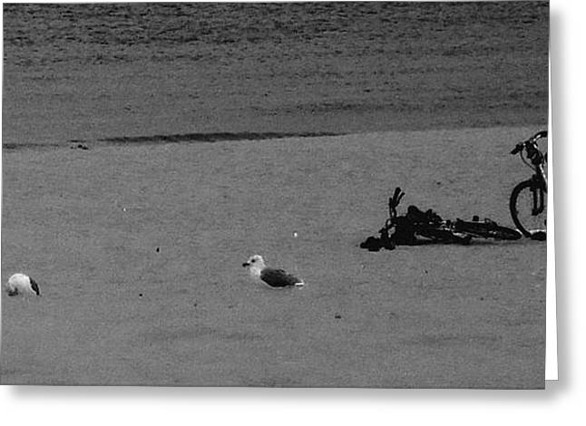 White Drawings Greeting Cards - Abandoned Bikes On Lake Michigan Beach Monochrome Greeting Card by Rosemarie E Seppala