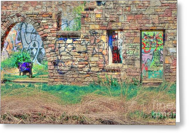 Struckle Greeting Cards - Abandoned Building Greeting Card by Kathleen Struckle
