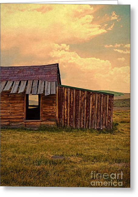 Old Cabins Greeting Cards - Abandoned Cabin Greeting Card by Jill Battaglia