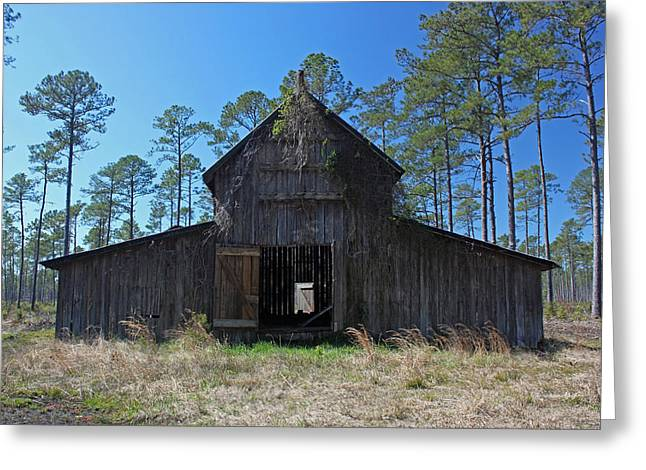 Barn North Carolina Greeting Cards - Abandoned Carolina Barn II Greeting Card by Suzanne Gaff