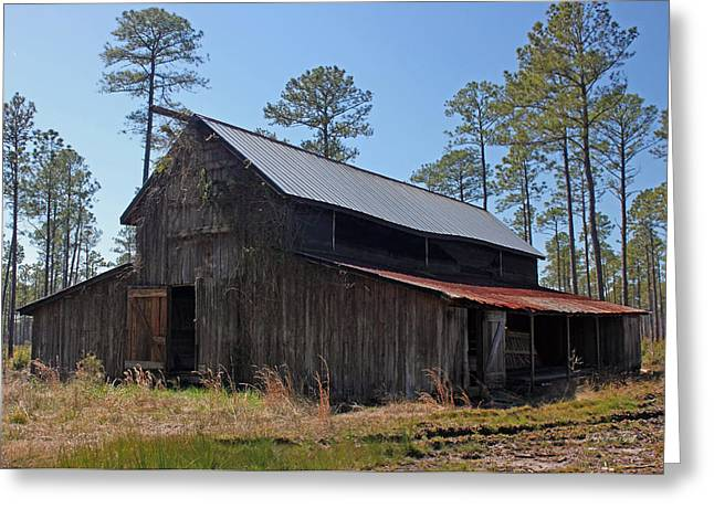 Tobacco Barns Greeting Cards - Abandoned Carolina Barn Greeting Card by Suzanne Gaff