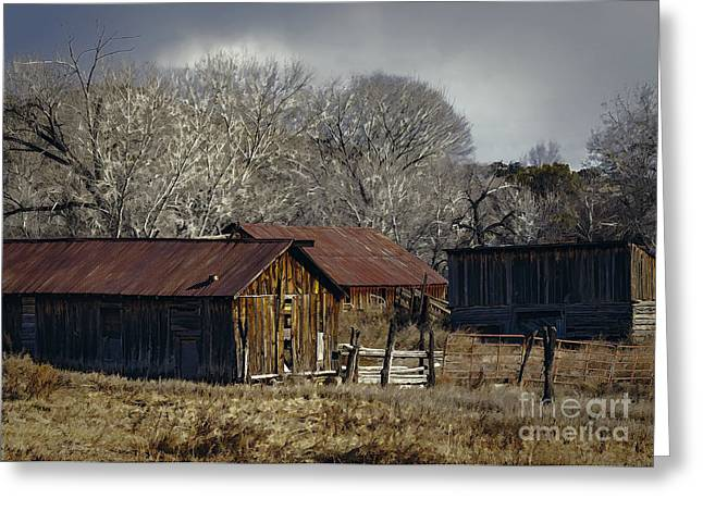 Recently Sold -  - Harvest Art Greeting Cards - Abandoned Colorado Farm Greeting Card by Janice Rae Pariza