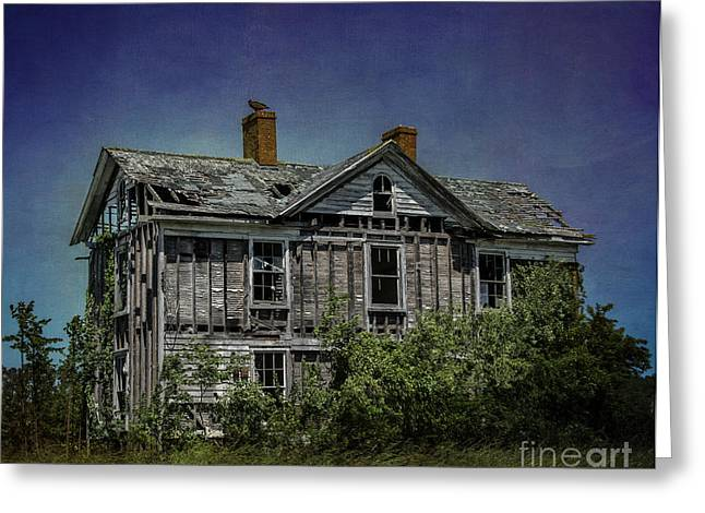 Eastern Shore Greeting Cards - Abandoned Dream Greeting Card by Terry Rowe