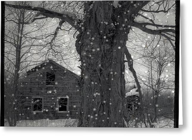 Abandoned Houses Digital Art Greeting Cards - Abandoned  Greeting Card by Gothicolors Donna Snyder