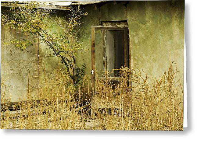 Abdandoned House Greeting Cards - Abandoned Green House-002 Greeting Card by David Allen Pierson