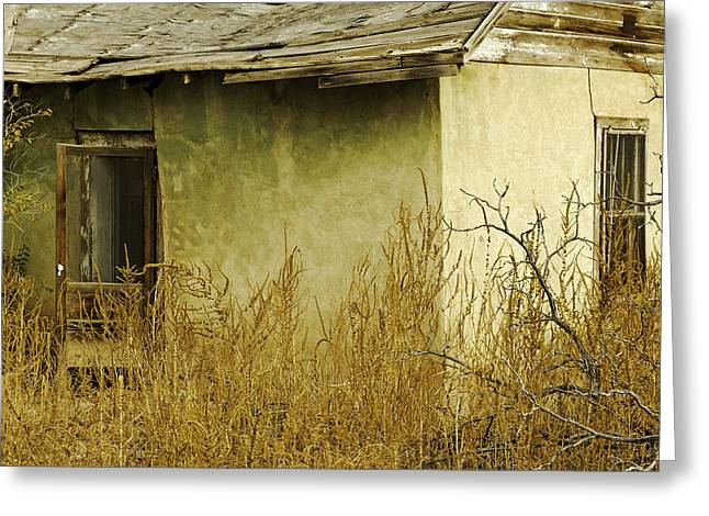 Abdandoned House Greeting Cards - Abandoned Green House-003 Greeting Card by David Allen Pierson