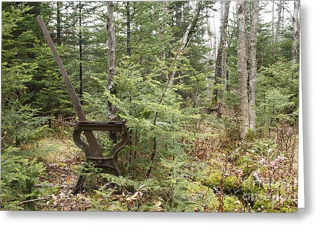 New Hampshire Logging Greeting Cards - Abandoned Harp Switch Stand - New England USA Greeting Card by Erin Paul Donovan