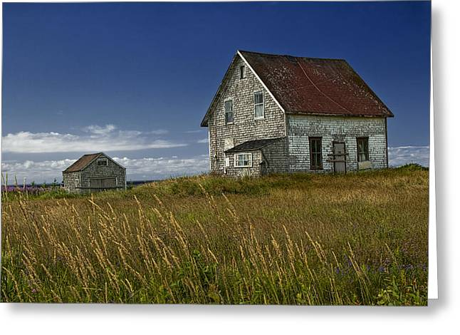 Randy Greeting Cards - Abandoned House in a field on a Prince Edward Island Canada Greeting Card by Randall Nyhof
