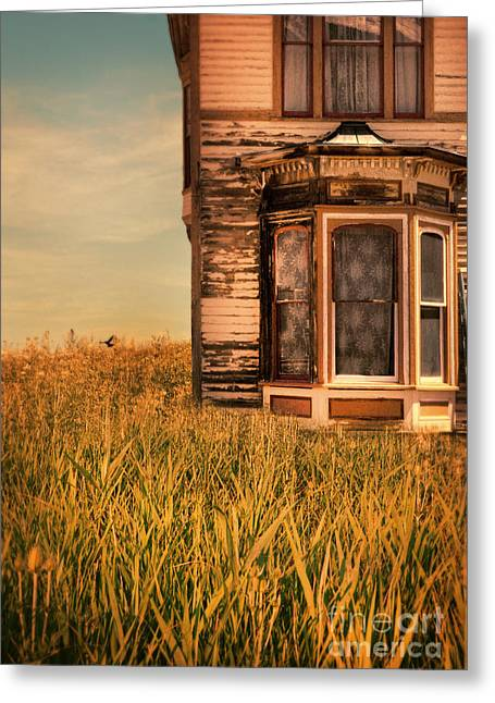 Run Down Greeting Cards - Abandoned House in Grass Greeting Card by Jill Battaglia