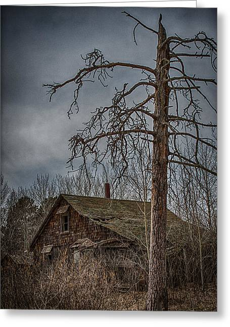 Overgrown Greeting Cards - Abandoned House Greeting Card by Paul Freidlund