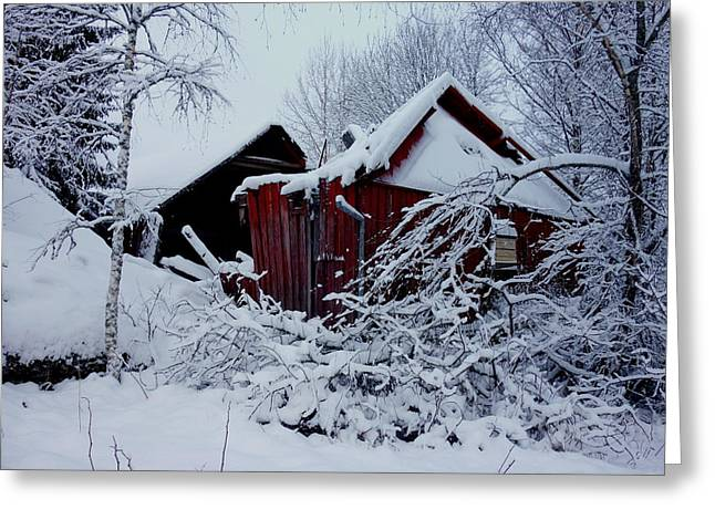 Sweating Photographs Greeting Cards - Abandoned In Snow Greeting Card by Hilde Widerberg