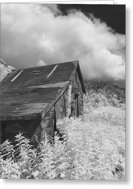 Recently Sold -  - Mining Photos Greeting Cards - Abandoned Miners Shack In The Hatcher Greeting Card by Mark Stadsklev
