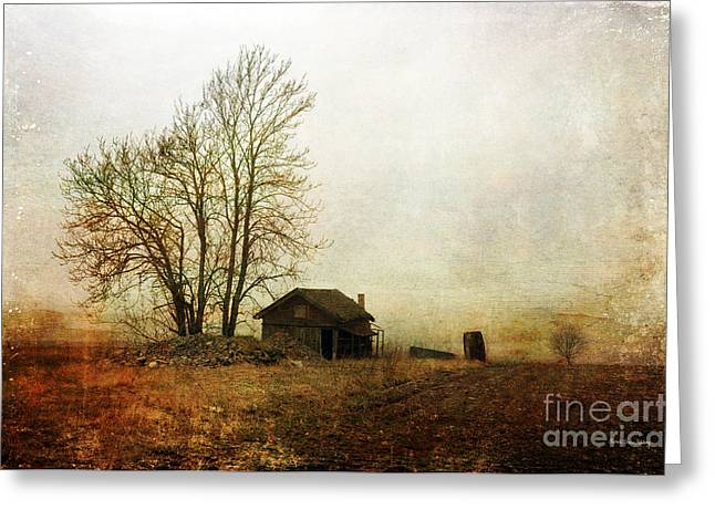 Photographic Art For Sale Greeting Cards - Abandoned Greeting Card by Randi Grace Nilsberg