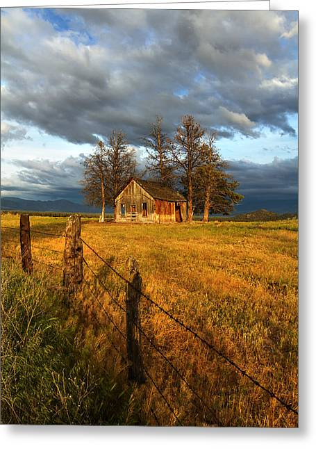 Siskiyou County Greeting Cards - Abandoned Greeting Card by Randy Wood