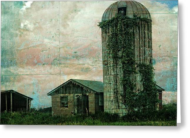 Overgrown Greeting Cards - Abandoned Greeting Card by Rhonda Barrett