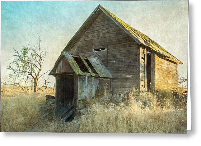 Abandoned Root Cellar Greeting Card by Angie Vogel