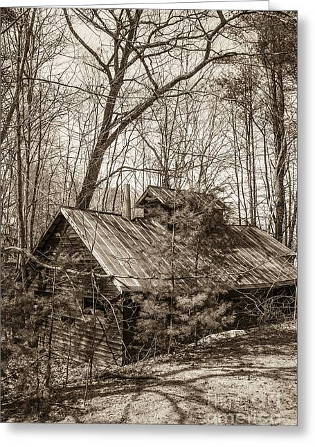 Old Maine Barns Greeting Cards - Abandoned Sap House Greeting Card by Alana Ranney