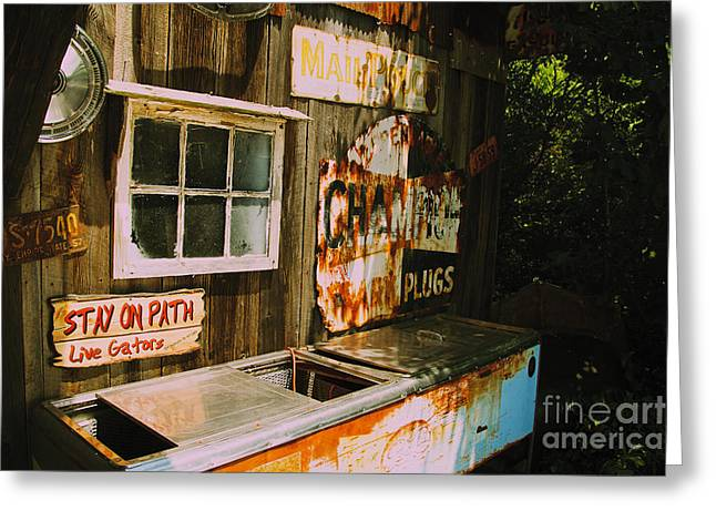 Wine Tour Greeting Cards - Abandoned Soda Cooler Greeting Card by William Norton