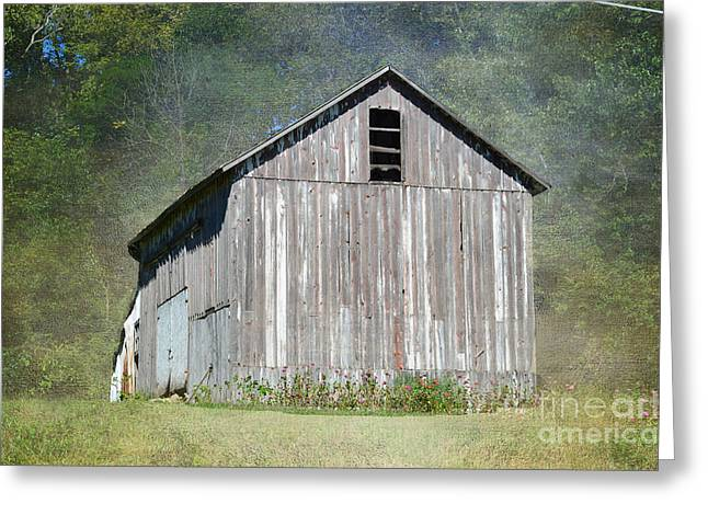 Unpainted Greeting Cards - Abandoned Vintage Barn in Illinois Greeting Card by Luther   Fine Art