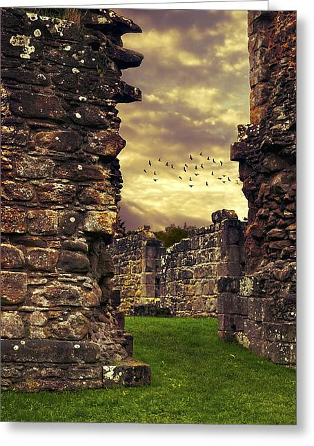 Abbey Greeting Cards - Abbey Ruins Greeting Card by Amanda And Christopher Elwell