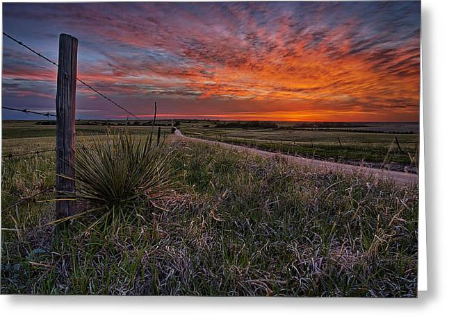 Grasslands Greeting Cards - Ablaze Greeting Card by Thomas Zimmerman