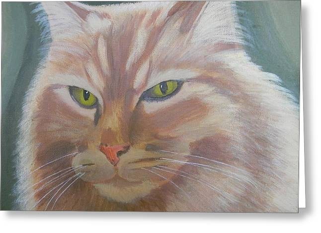 Abner Greeting Cards - Abner of the Garden Shed in Cambria Greeting Card by Cheri Sperl