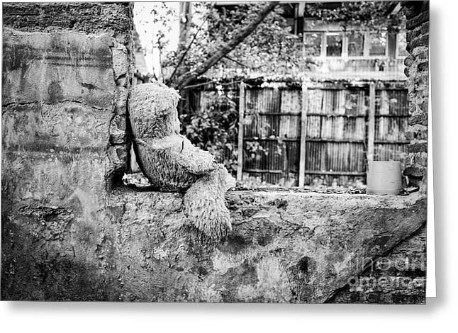 Toy Animals Greeting Cards - Abandoned Teddy Bear I Greeting Card by Dean Harte