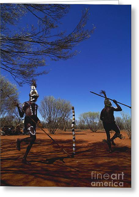 Social System Greeting Cards - Aboriginal Dreamtime Ceremony Greeting Card by Art Wolfe