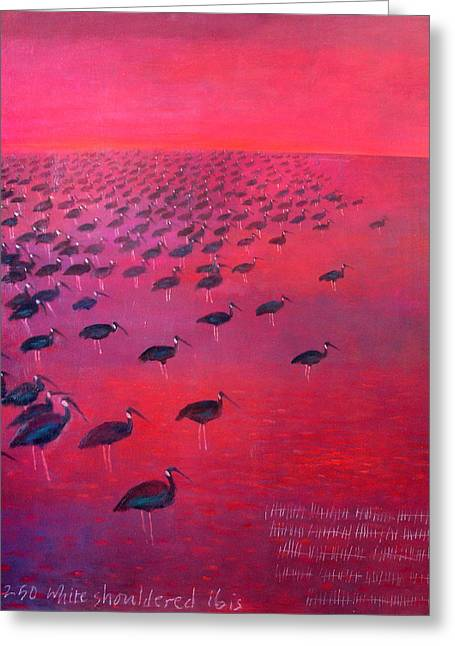 Threats Greeting Cards - About 250 White Shouldered Ibis Oil On Canvas Greeting Card by Charlie Baird