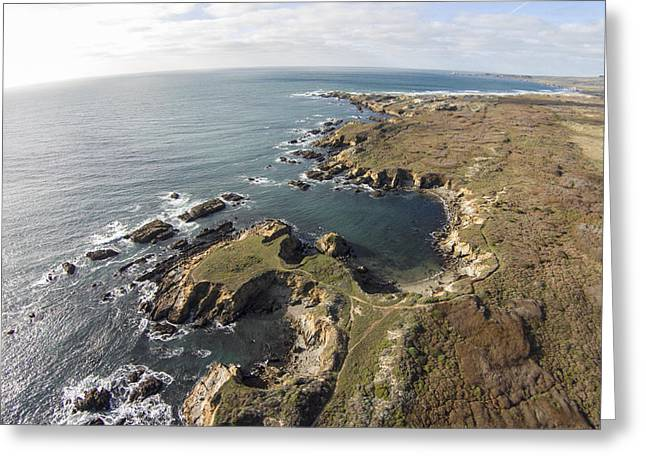 Pescadero Greeting Cards - Above Franklin Point Greeting Card by David Levy