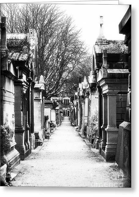 Cemeteries Of Paris Greeting Cards - Above Ground Greeting Card by John Rizzuto