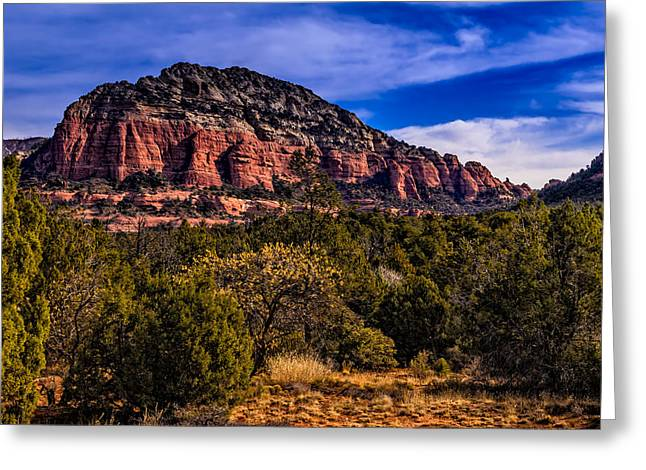 Beauty Mark Greeting Cards - Above It All Greeting Card by Mark Myhaver