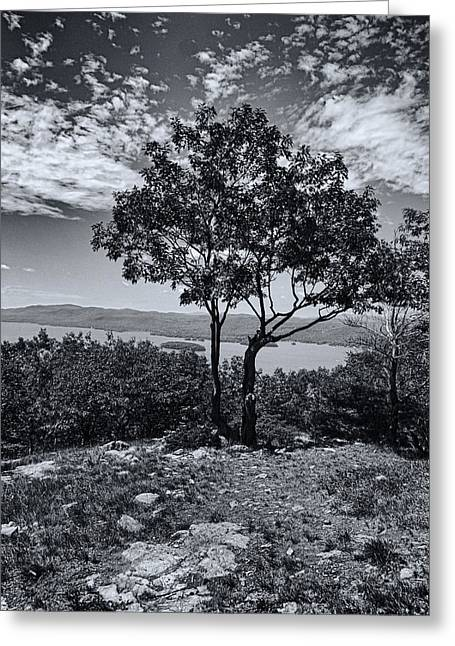 The Lake George Greeting Cards - Above Lake George Black and White Greeting Card by Joshua House