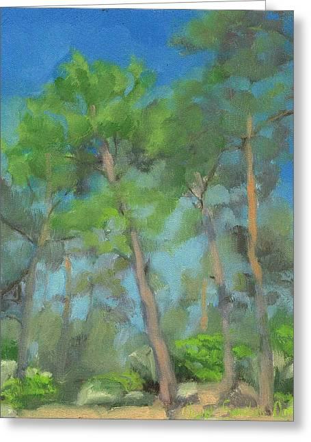 Fontainebleau Forest Greeting Cards - Above route des essences - Au dessus la route des essences Greeting Card by David Ormond