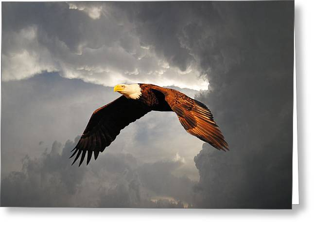 Above The Storm Greeting Card by Jai Johnson